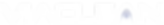 Logo-Viaclean-vector--blanco.png