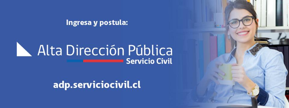 Alta_Dirección.png