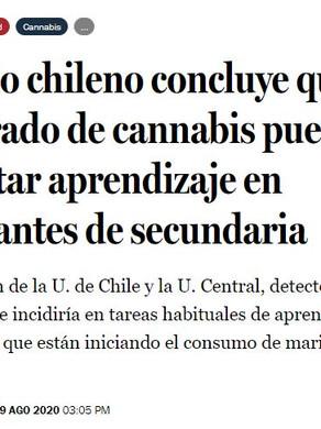 Estudio chileno concluye que uso moderado de cannabis puede impactar aprendizaje en estudiantes