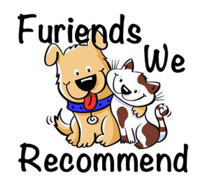 Furiends We Recommend