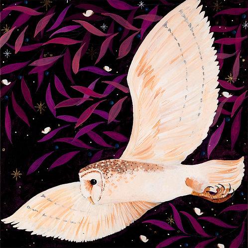 Bright Eye Barn Owl PRINT