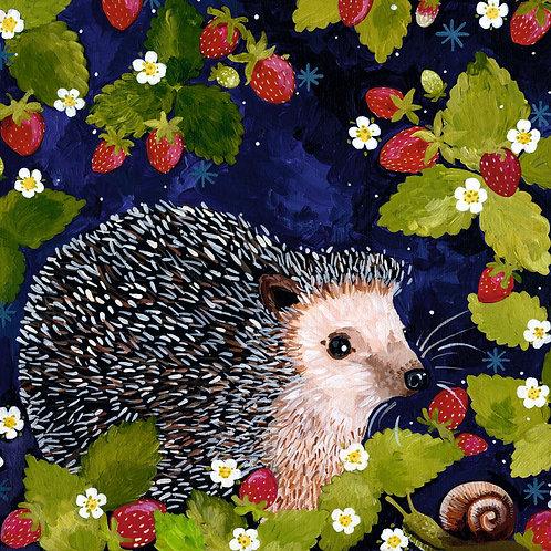 Rosie Hedgehog, PRINT