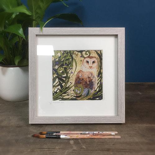 Midnight Owl,  Barn Owl framed boxed print