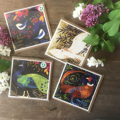 Greetings cards, pack of 4 wild and wonderful birds