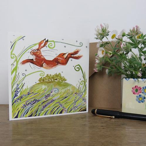 Mayhill Hare, Card