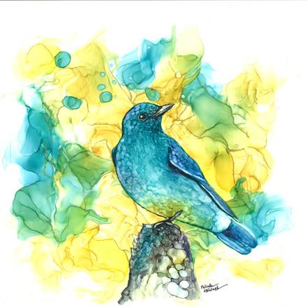 Bird2_scan.jpg