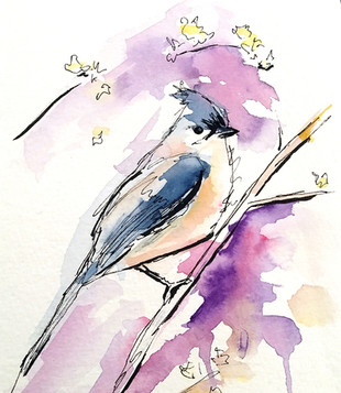 Loose style bluebird
