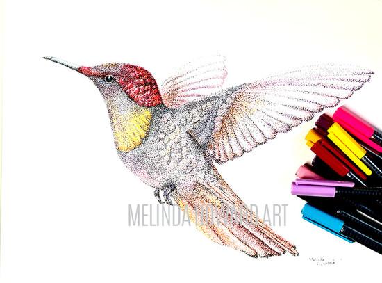 stipplehummingbird.jpg