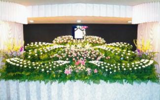 葬儀業者の紹介