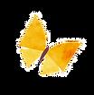 蝶々2.png