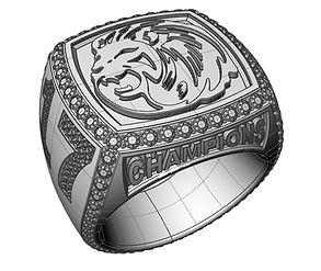 tech white champ ring.JPG