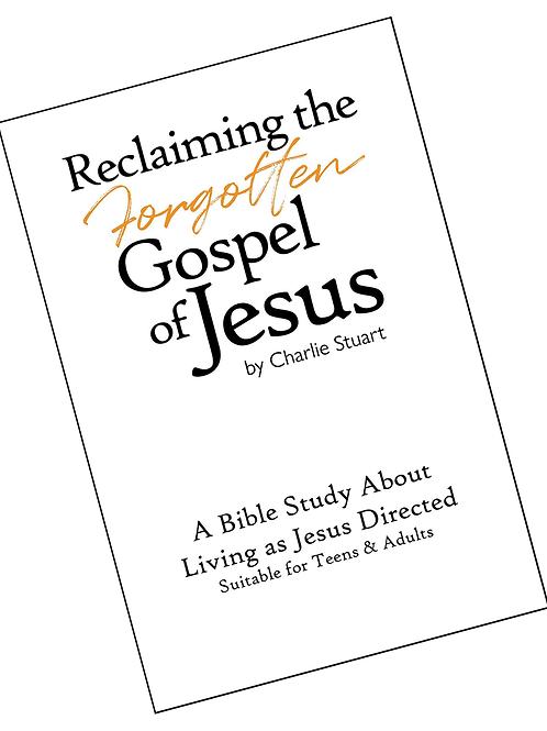 "Bible Study for ""Reclaiming the Forgotten Gospel of Jesus"""
