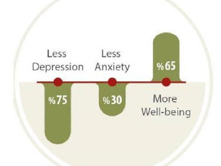 Why meditate? Meditation Benefits and statistics