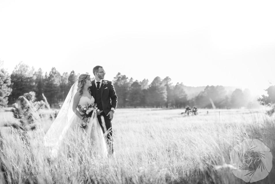 Second shooter for Dan & Erin PhotoCinema