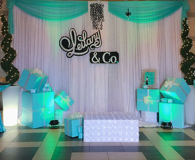 Gallery_Themed Events_5.Byancas Event and Decor Las Vegas