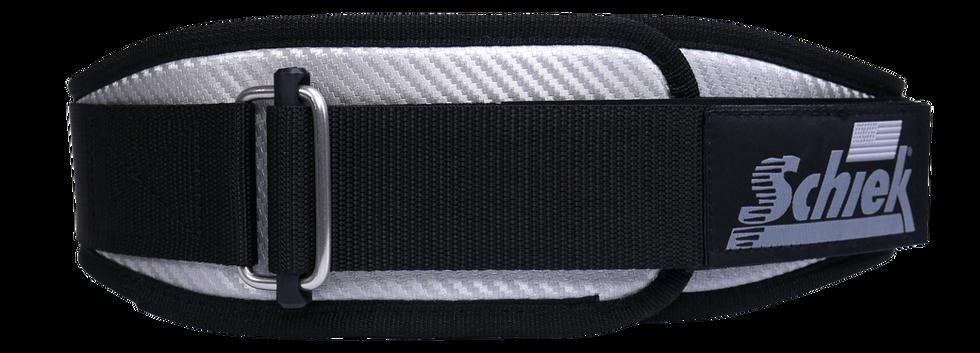 3004 carbon fiber silver 2.png