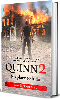 Quinn 2 - No Place to hide