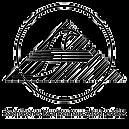 logo sächsisches KH altscherbitz_edited.png