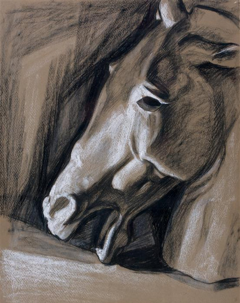 Plaster Cast Study - Horse