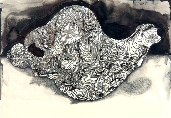 Shells (Contour Drawing) II