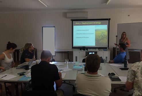 Geogia Ward-Fear conductinga stakeholder workshop