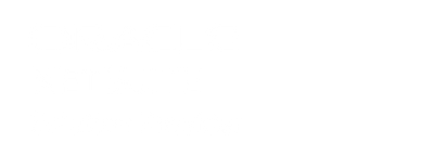 logo-oracle-netsuite-solution-provider-v