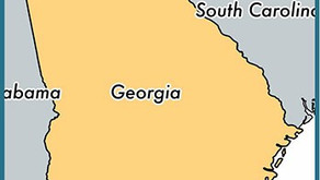 To the Democrats Boycotting Georgia Over Election Reform:  Please Do. - A #MAGA Perspective.