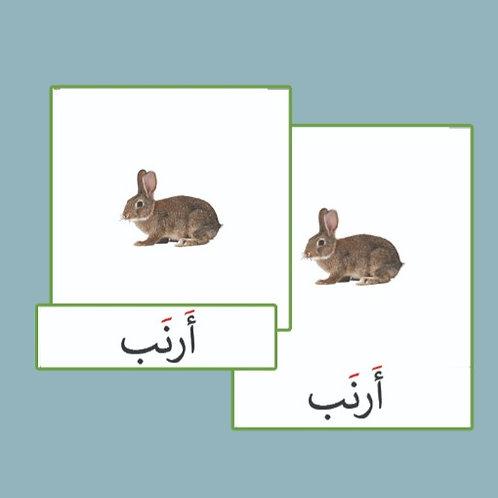بطاقات ثلاثية حيوانات المزرعة