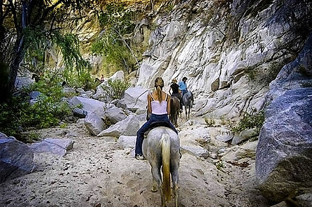 desert.trail.rides.csf011.jpeg