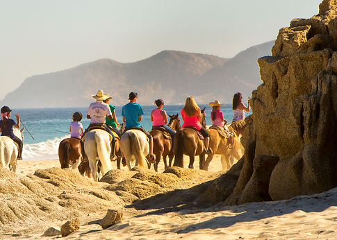 beach.trail.rides.csf002.cr.jpg