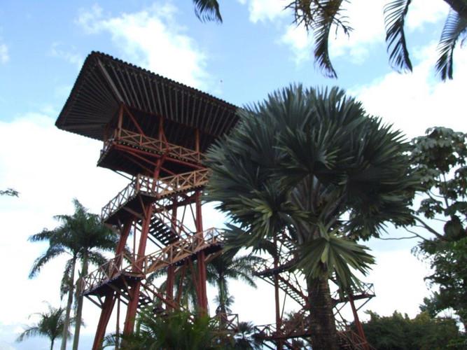 Parque del Cafe