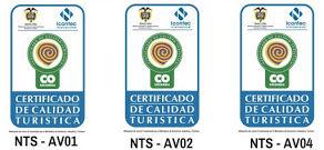 NTS - AV01 (4).jpg