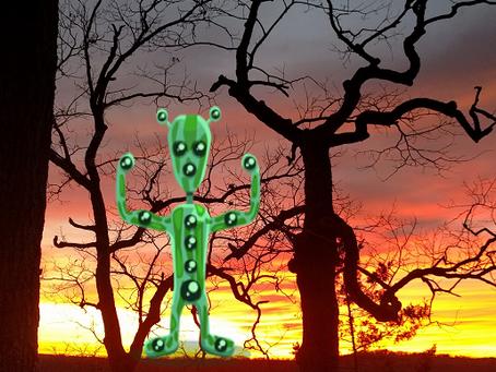 Meeting Extraterrestrials