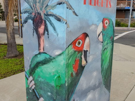 Thinking Outside of the Box…The Utility Box