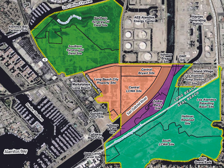 Plans for Restoring the Los Cerritos Wetlands - Open for Comments
