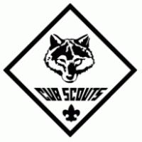 Long Beach Area Scouts Celebrate Centennial