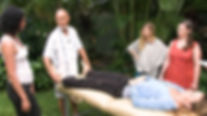 Kauai Retreat Training, Body Tune Up, Applied Kinesiology, Passive Spine Adjustment, Heal Leaky Gut
