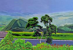 Tropische Regenlandschaft