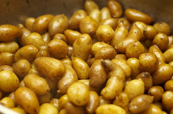 Confit+Fingerling+Potatoes