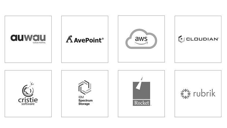 CRISTIE Tech partners.jpg