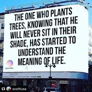 #plantthetinyseed.jpg