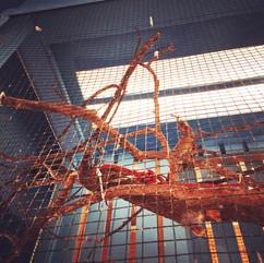 bird cage, 2016