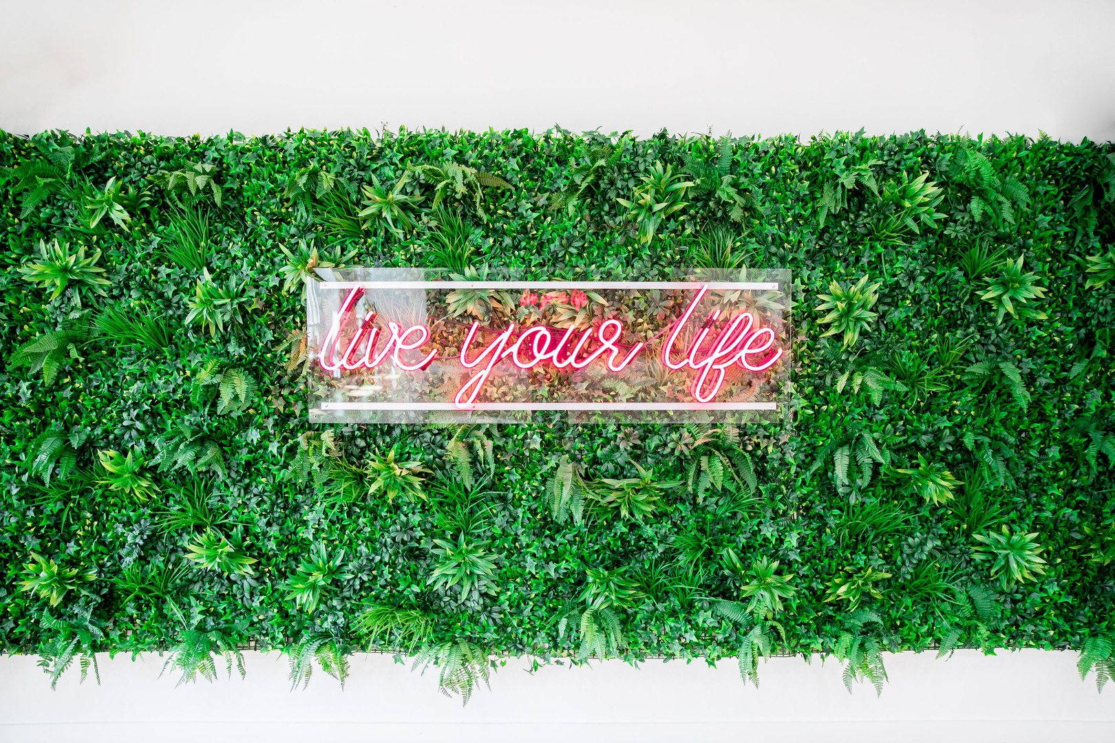 Rae Studios Live Your Life Neon Sign Floral Plant Wall