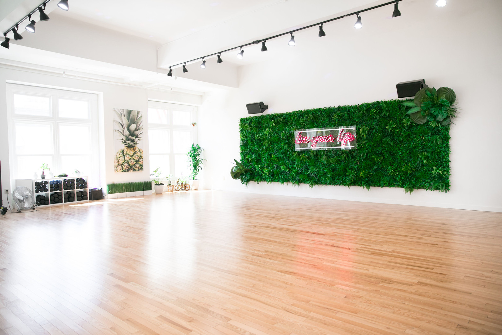 Rae Studios Living Wall Neon Sign Studio Rental