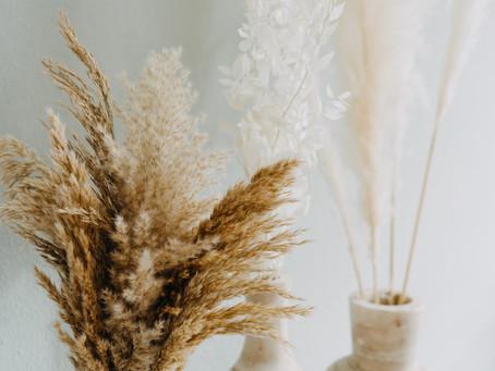 5 Dinge, die du über Trockenblumen wissen musst.