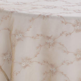 Champagne Embroidered Sheer Overlay