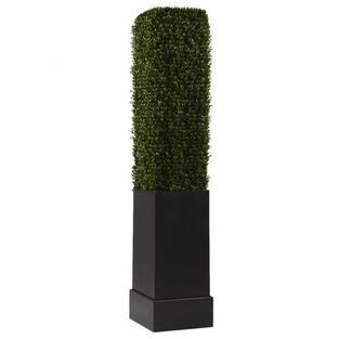 Boxwood Column 7'