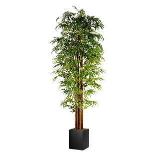 Bamboo Tree 9'