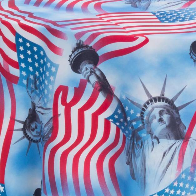 Lady Liberty Prints Overlay