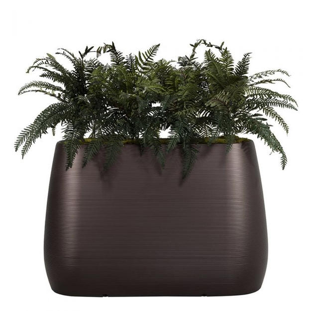 Planter Dividers with Ferns